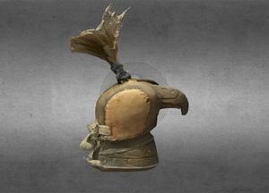 Hood for a hawk 3D Model