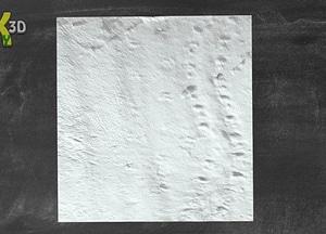 Tertrapod Footprints on Valentia Island 3D Model