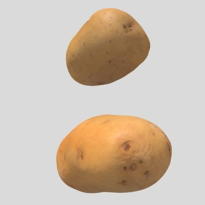2x - Potatoes 3D Model