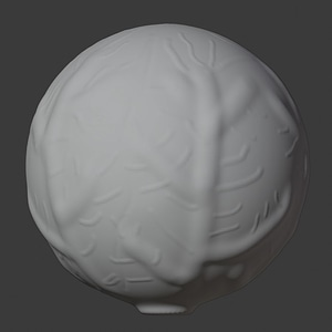 Cabbage 3D Model