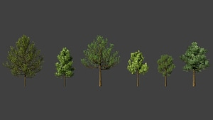 Set of Trees 3D Model