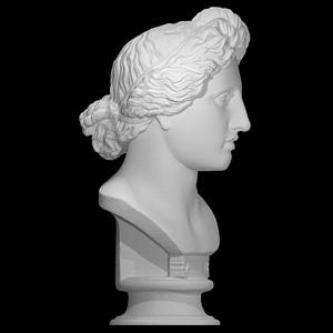 Bust of the Apollo Lykeios 3D Model