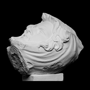 Dying Persian 3D Model