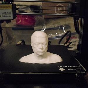 Bust print of myself 3D Model