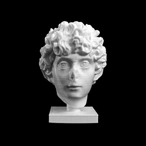 Head of a Roman Youth at The Dallas Museum of Art, Texas 3D Model