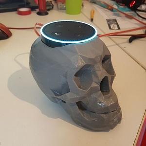 Skull echo dot holder 3D Model