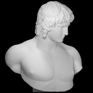 Portrait of Antinous 3D Model