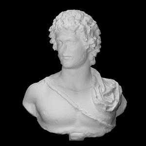 Marble portrait bust of a young man 3D Model
