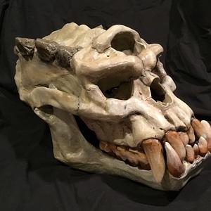 Troll Skull 3D Model