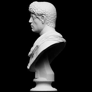 Portrait with panther skin over shoulder 3D Model