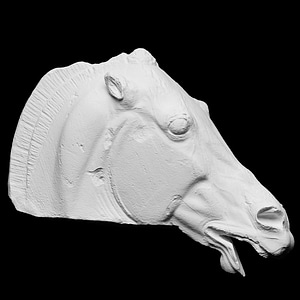 Head of the Horse of Selene 3D Model