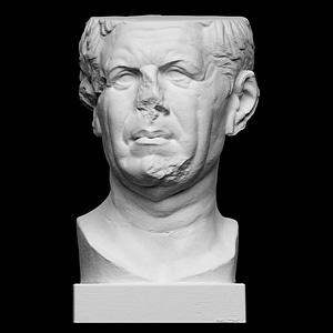 Portrait of a Roman, the so-called 'Tivoli General' 3D Model