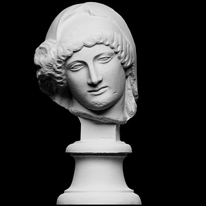 Head of the Mourning Penelope 3D Model