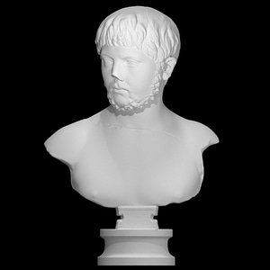 A Bust of a Young Man 3D Model