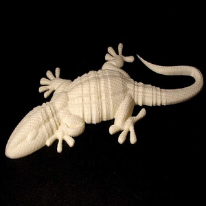 Gecko 3D Model