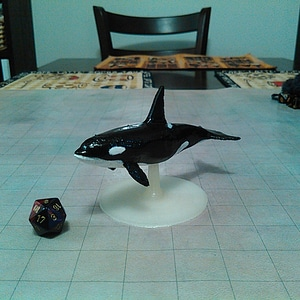 Killer Whale for Tabletop Gaming 3D Model