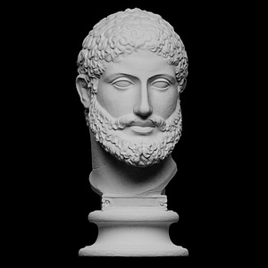 Bearded man 3D Model