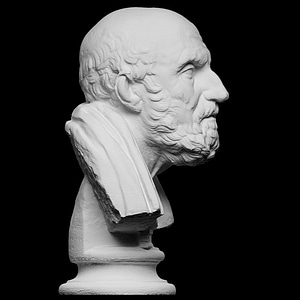Portrait of Chrysippos 3D Model