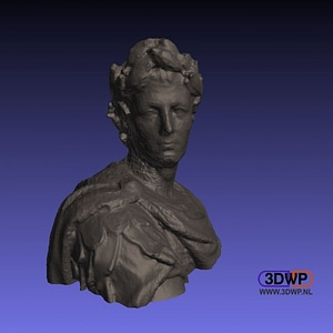 Julius Caesar Bust (3D Scan) 3D Model