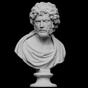 Bust of a Philosopher or Barbarian 3D Model