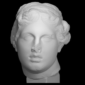 Portrait 'The Beautiful Head' 3D Model