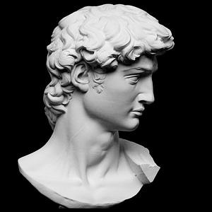Head of Michelangelo's David 3D Model