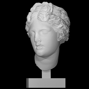 Head of one of Laocoon's sons 3D Model