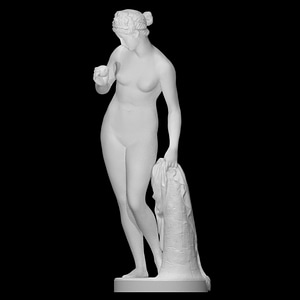 Venus with the Apple 3D Model