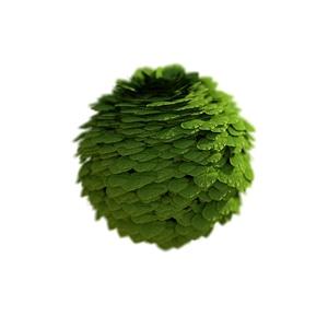 Ball of Leaves 3D Model