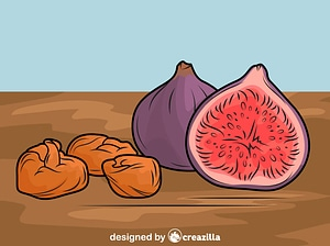 Figs on the Table vector