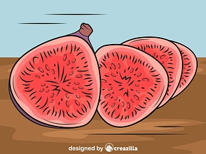 Figs Cut into Slices vector