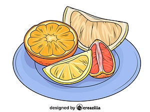 Citrus Fruits on the Plate vector