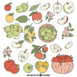 Set of Apples vector