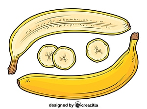 Banana Cut in Half vector