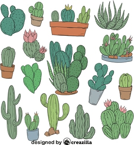 Set of Cactus vector
