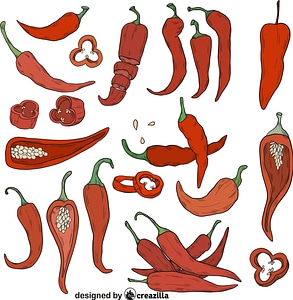 Set of Chilli vector