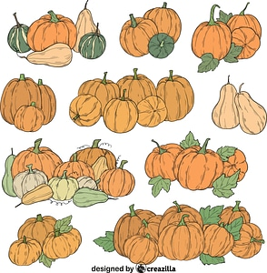 Set of Pumpkin patch vector