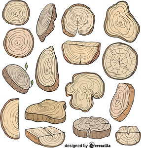 Set of Tree trunk vector