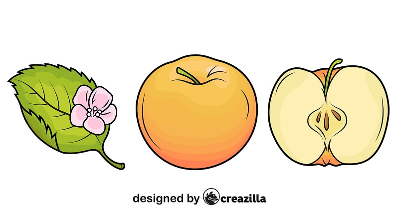 Apples and the Leaf vector