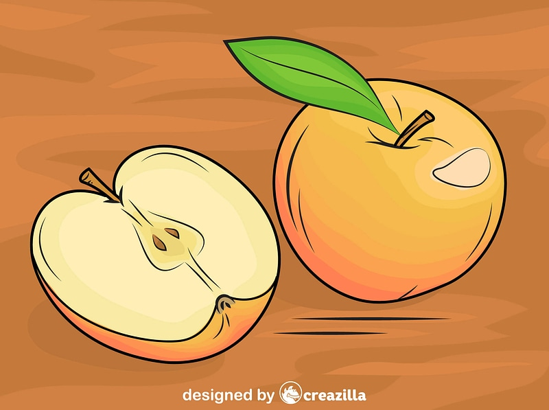 Apples on the Table vector