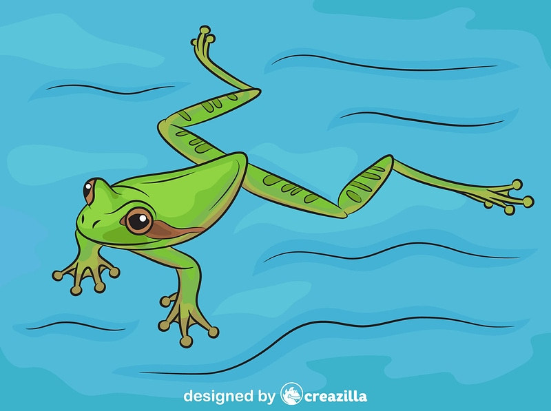 Masked Tree Frog Swimming vector