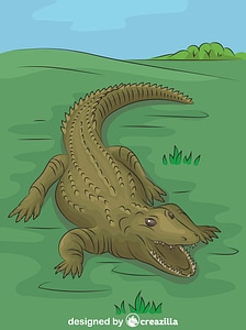 Nile Crocodile in the Grass vector