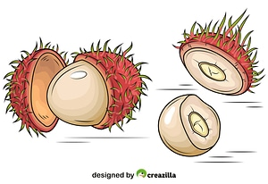 Set of Rambutan exotic fruits vector