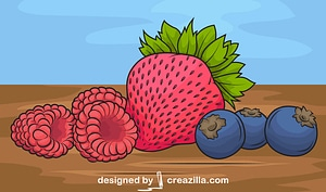 Raspberry, Strawberry and Blueberry vector