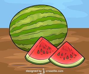Watermelon on the Table vector