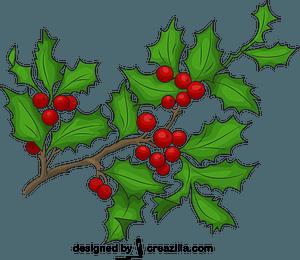 Holly Berries vector