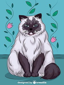Himalayan Cat vector