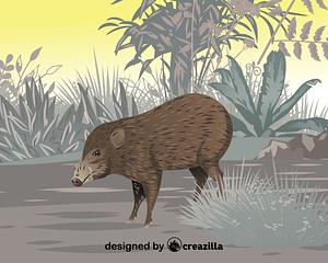 Pygmy hog vector