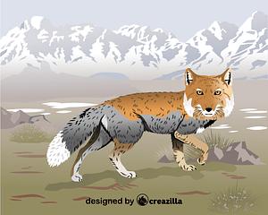 Tibetan fox vector