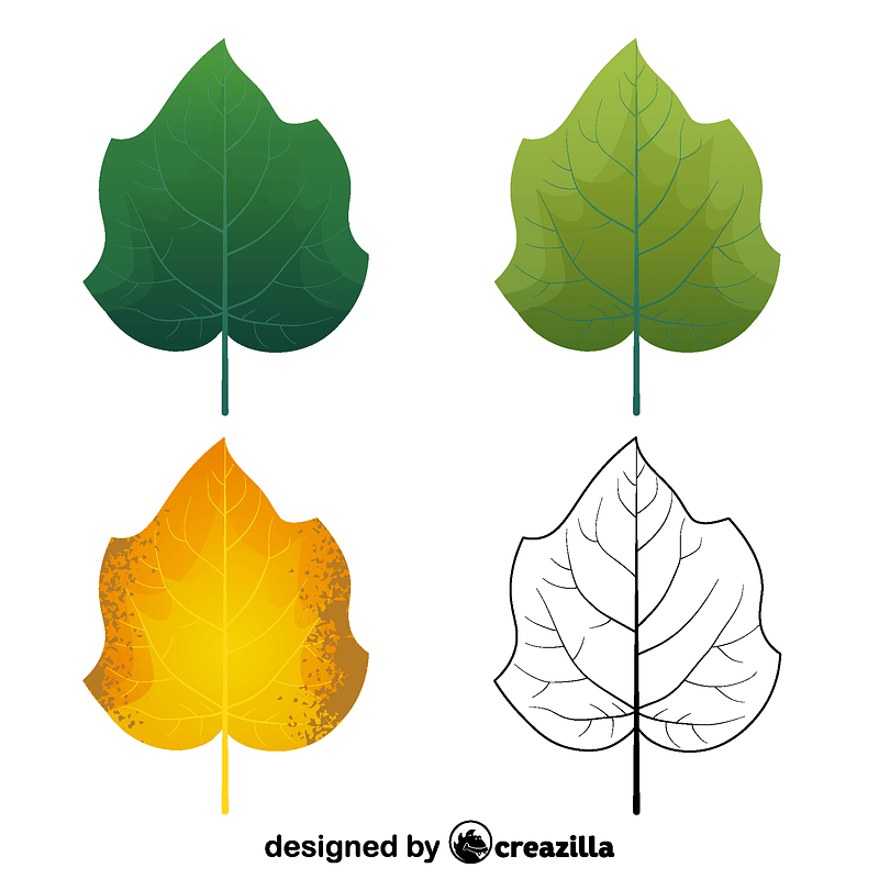 Foxglove tree leaves vector